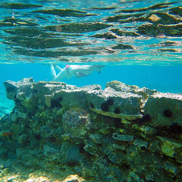 Elounda (région). Ruines minoennes submergées du village d'Olous.