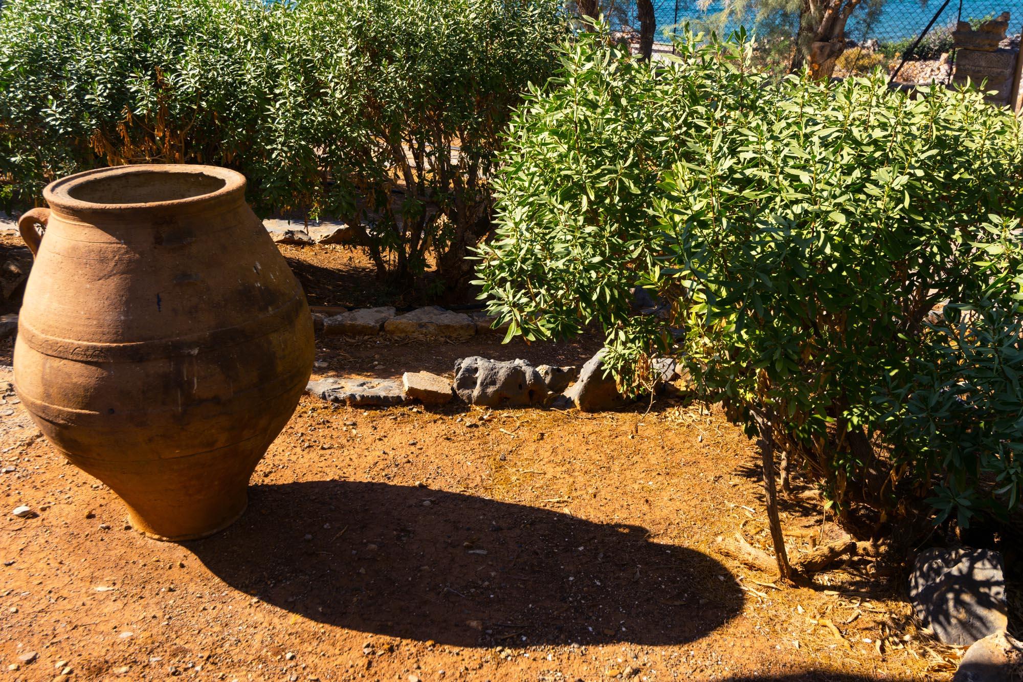 V1 garden